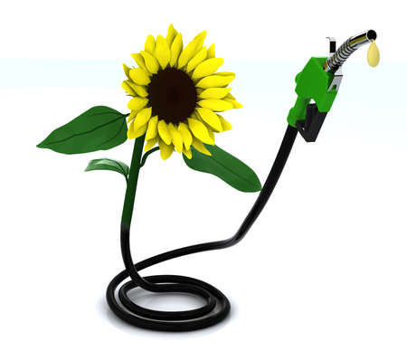 bio fuel: suflower and fuel pump, 3d illustration  Stock Photo