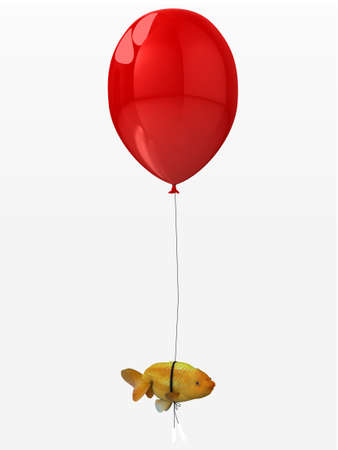 jelly head: goldfish tied to a balloon that flies, 3d illustration Stock Photo