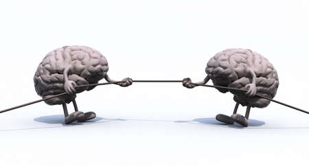 tug: two human brains tug of war rope, 3d illustration