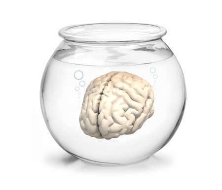 goldfish jump: fishbowl with human brain inside, 3d illustration Stock Photo