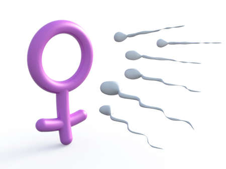 sex cell: sexual symbol woman and sperms, 3d illustration