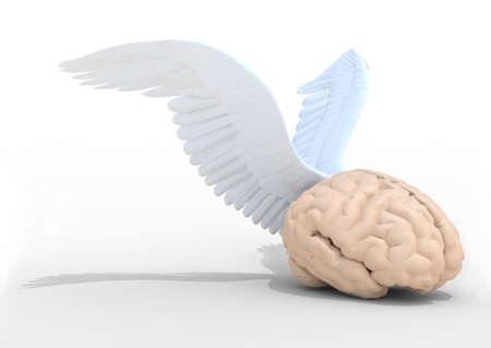 cerebra: human brain with wings, 3d illustration