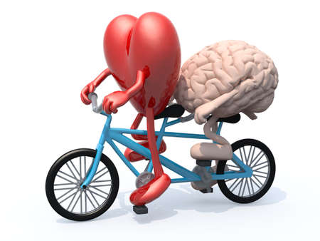 human brain and heart with arms and legs riding tandem bicycle, 3d illustration