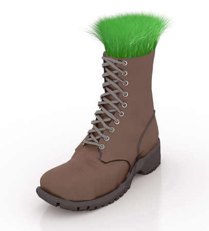 go inside: Shoe with grass inside, go green comfortable, isolated 3d illustration