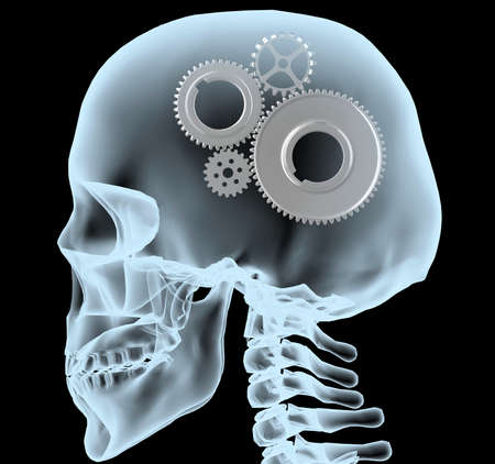 mental work: X-ray of a head with the gears instead of the brain, 3d illustration Stock Photo