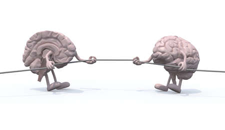 insult: two half brains tug of war rope, 3d illustration