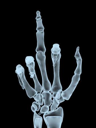 foda: Radiografía de la mano haciendo el gesto ofensivo, ilustración 3d Foto de archivo