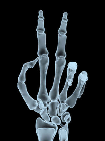 offend: x-ray hand making victory gesture, 3d illustration