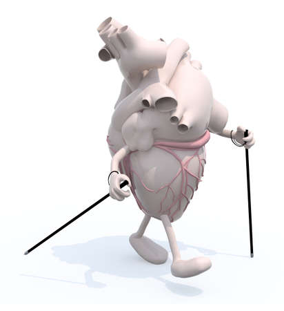 healt: human heart with arms and legs,thats walking with sticks, 3d illustration