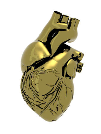 brass: Human metal heart isolated on a white background, 3d illustration