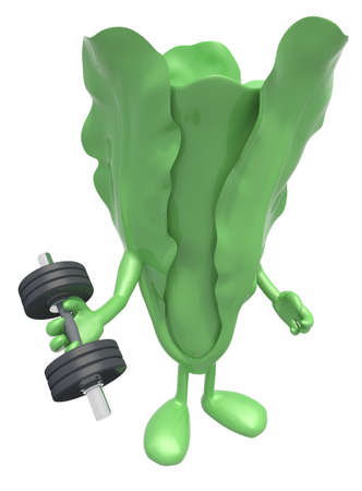 weight training: lettuce with arms and legs does weight training, 3d illustration