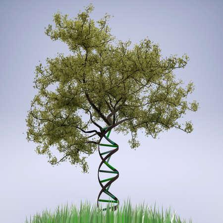 dna shaped tree trunk, 3d illustration 写真素材