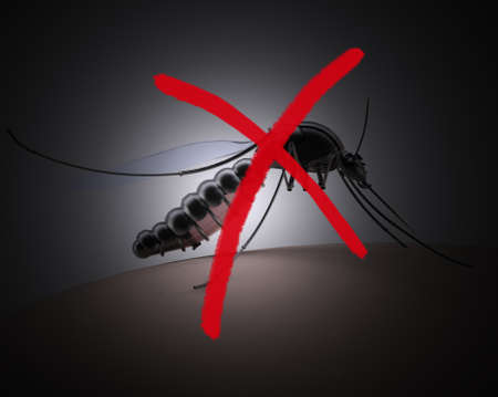 mosquito with red cross sign on dark background, 3d illustration