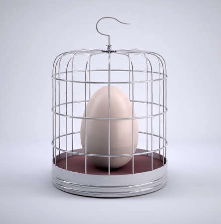Birdcage with egg inside, 3d illustration