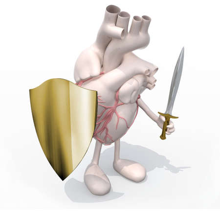 Heart organ with sword and shield, 3d illustration