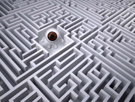Brown eyeball inside the labyrinth maze, 3d illustration Stock Photo