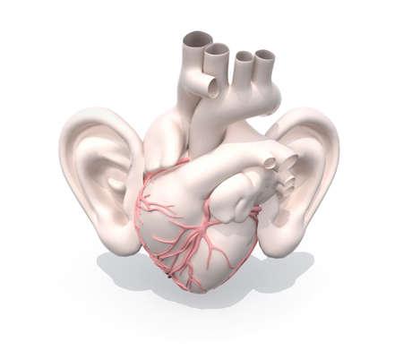 human heart organ with big ears, 3d illustration
