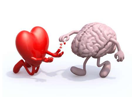 Herz und Gehirn lieben Almosen, 3D-Darstellung Standard-Bild