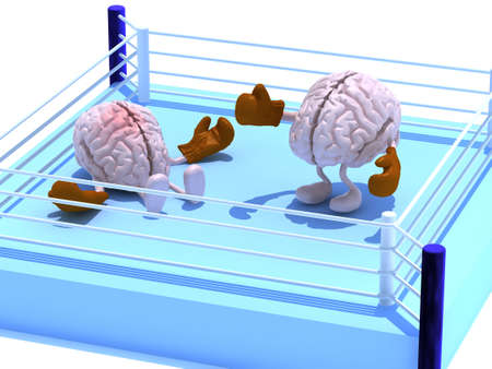 two human brains with boxing gloves in a fight on a boxing ring, 3d illustration Stockfoto