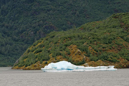 Small iceberg in Mendenhall Lake, Alaska, photographed from the Visitor Center on an overcast summer day.