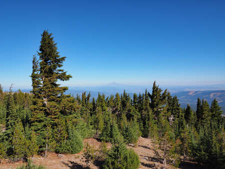 Distant views of Mount Jefferson and Mount Rainier on an exceptionally clear day from the Timberline Trail on Mount Hood, Oregon.