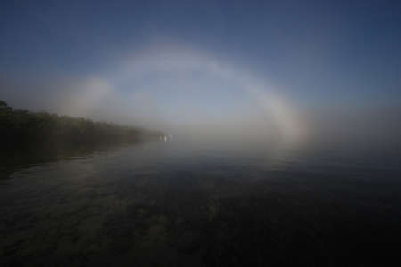 Bright fogbow in Bear Cut off Key Biscayne, Florida, with Great Egrets, Ardea alba, wading beneath. Imagens