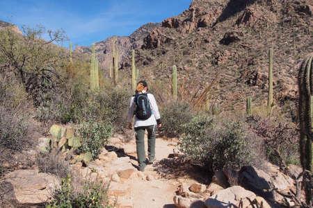 Woman hiking the Pima Canyon Trail in the Santa Catalina Mountains near Tucson, Arizona. Stock Photo