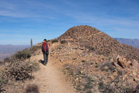 Woman hiking the King Canyon Trail in the Tucson Mountains area of Saguaro National Park, Arizona.