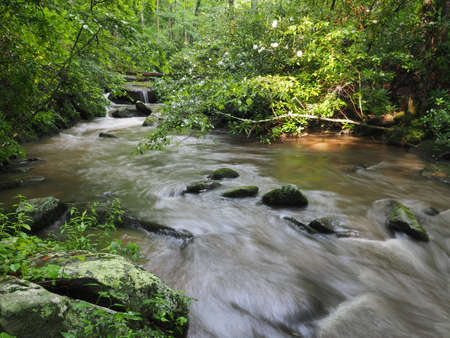 Yellow Creek near Robbinsville, North Carolina, flowing strongly after heavy summer rains.