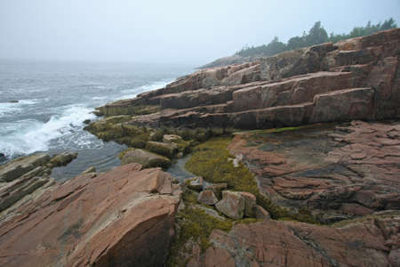 The rugged granite coast of Acadia National Park, Maine, on a foggy summer morning. Imagens