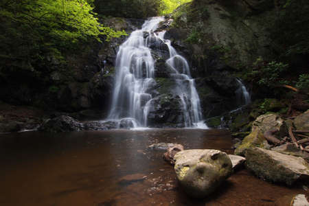 Spruce Flats Falls in the Great Smoky Mountains National Park, Tennessee, in early summer. 免版税图像