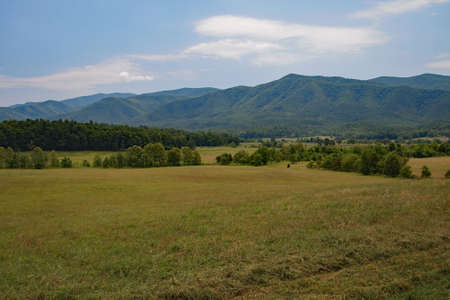 Cades Cove in the Great Smoky Mountains National Park, Tennessee, in early summer.
