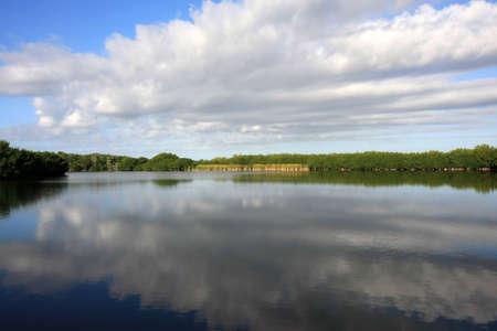 Cloudscape riflessa nelle acque tranquille di Paurotis Pond nel Parco nazionale delle Everglades, Florida. Archivio Fotografico