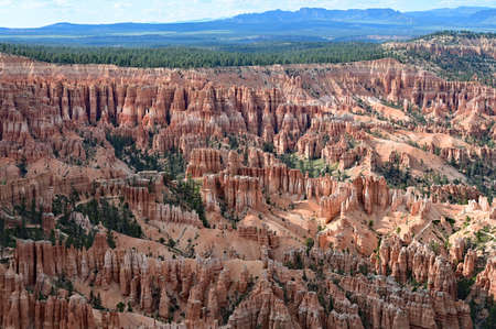 The natural amphitheatre in Bryce Canyon National Park, Utah in afternoon light from Inspiration Point.