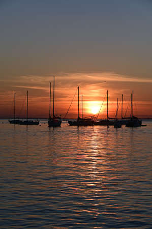 Sailboats anchored in Crandon Marina on Key Biscayne, Florida under colorful sky at sunset.