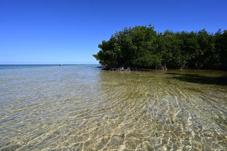 Shallow sandbar and mangrove coast in Bear Cut off Key Biscayne, Florida on clear sunny summer afternoon.