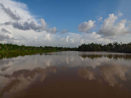 Summer cloudscape reflected in calm water of Eco Pond in Everglades National Park, Florida. 版權商用圖片