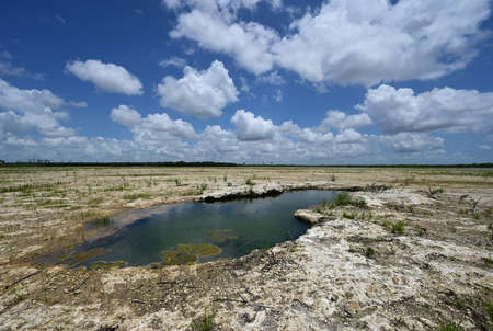 Solution Hole in Hole-In-The-Donut restoration project area in Everglades National Park, Florida under summer cloudscape.