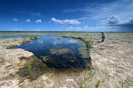Active senior explores and photographs landscape of Hole-in-the-Donut habitat restoration area of Everglades National Park, Florida.