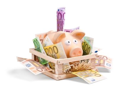 Piggy Bank with a lot of Euro Bank Notes surronding him in his house