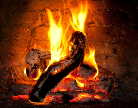 Wooden log burning in the fireplace of a pizzeria Wood Oven photo