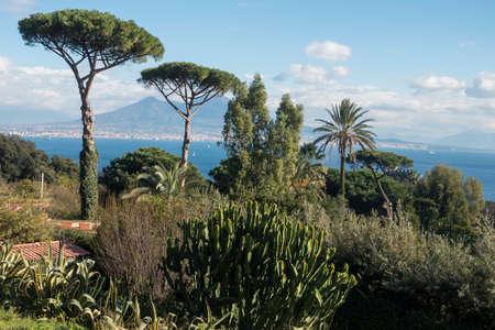 paisaje mediterraneo: Mediterranean landscape near Naples Foto de archivo