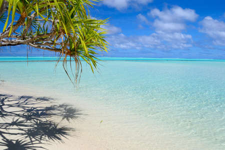 Playa perfecta tropical en medio del Pac�fico, las Islas Cook, Aitutaki Atoll Un F photo