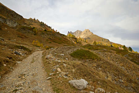 bardonecchia: A rough road leading to the top pf the mountain in a autumnal scenery with yellow larches and grass, in the italian-french Alps near Bardonecchia