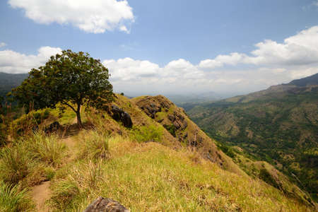 ella: Panoramic view of Ella Gap and Ella Rock, Hill Country, Sri Lanka, from the top of Little Adam s Peak in a bright sunny day
