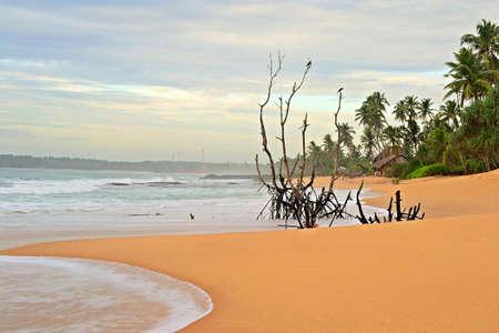 Blurred seascape, long exposure taken on tropical beach during monsoon time at dusk, Tangalla, Sri Lanka Stock Photo - 17424232