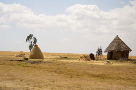 Tipical african landscape with hut, Ethiopia  photo