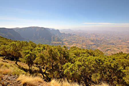 Wide angle view from the Simien Mountain National Park in the dry season with erica trees in the foreground Stock Photo - 17723484