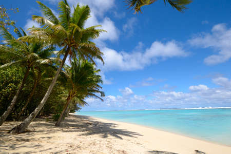 rarotonga: La splendida spiaggia e il mare di Rarotonga, nelle Isole Cook, Oceano Pacifico