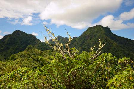 rarotonga: Bella vista dall'ago affaccia picchi vulcanici in mezzo Rarotonga Island